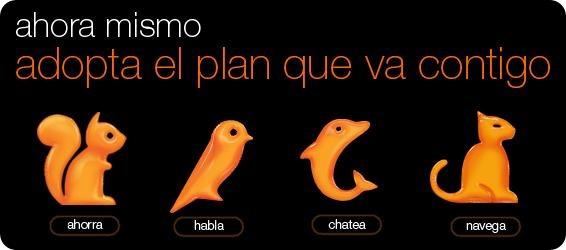 planes orange