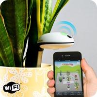 17 koubachi wifi plant